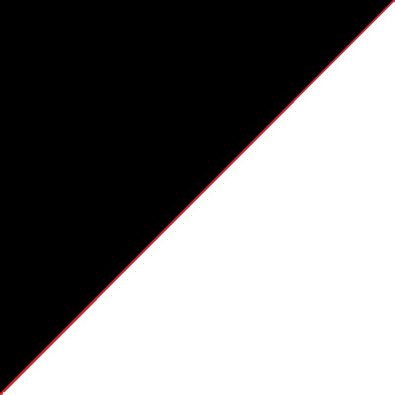 Noir + Blanc